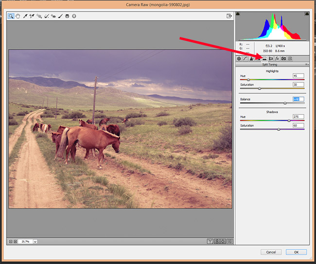 How to Use Camera Raw Filters in Photoshop