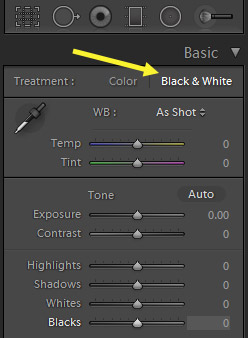 How to Create a High Contrast Black& White Effect in Lightroom